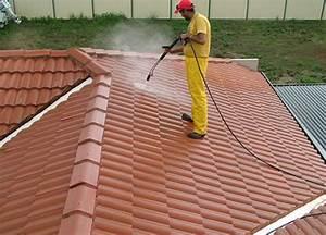 Perche Telescopique Nettoyage Toiture : nettoyage et d moussage de toiture 17 saintes artisan ~ Premium-room.com Idées de Décoration