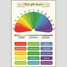 Chemical Peel Depth Is Dependent On The Ph Scale! Luxury