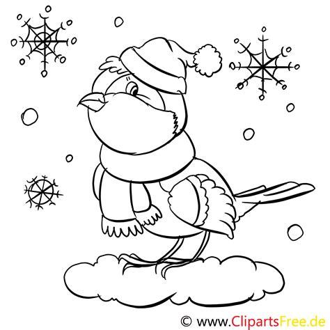 vogel im winter ausmalbilder fuer kinder kostenlos