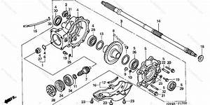 Diagram  Wiring Diagram For Honda Trx 350 Full Version Hd