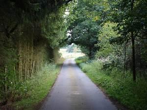 Schnellster Weg Nach Hause : der weg nach hause foto bild landschaft wege und pfade natur bilder auf fotocommunity ~ Watch28wear.com Haus und Dekorationen