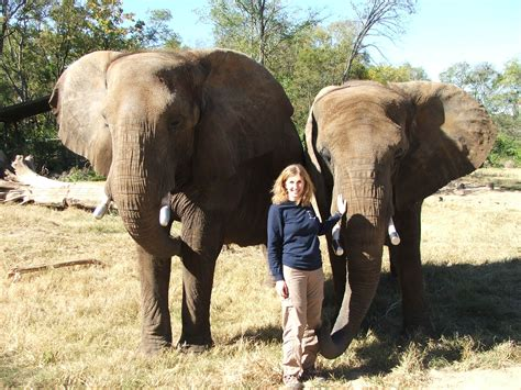 wildlife research conservation