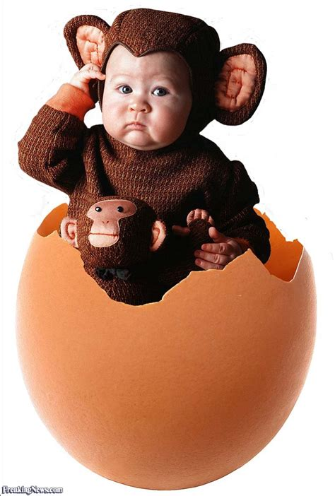 Baby In A Monkey Suit In An Egg Pictures  Freaking News