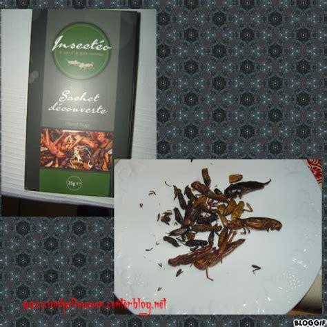 insectes cuisine cuisine insectes