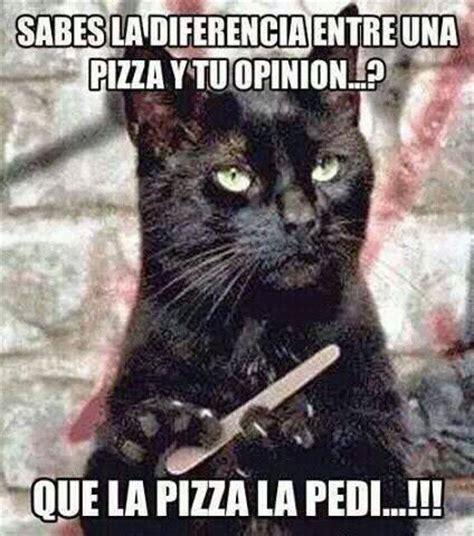 Memes De Gatos - graciosas de gatos12 imagenes y memes graciosos de gatos para whatsapp