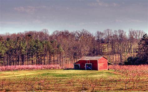 beauty  rural south carolina