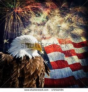 Composite Photo Bald Eagle Flag Fireworks Stock Photo ...