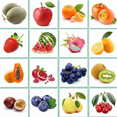 Seeds Kinds Fruits Different Seed Garden Seasons