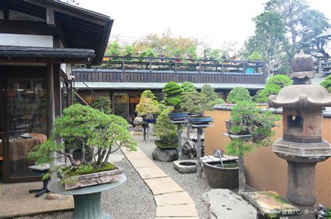 ธรรมเนียมปฎิบัติในการเที่ยวสวนบอนไซในญี่ปุ่น - บอนไซ บอนไซ ...