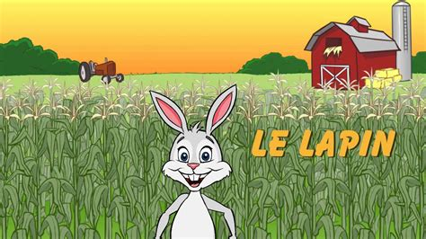 Learn animal names in French - YouTube