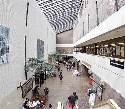 Library Brook Stony University Libraries Stonybrook Hours