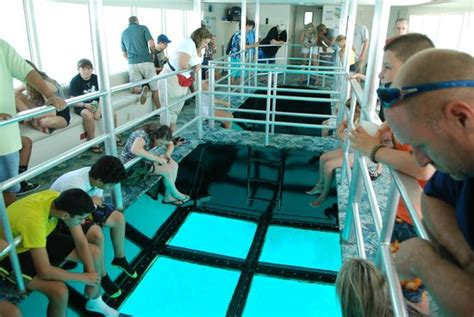Key Largo Princess Glass Bottom Boat by The Air Conditioned Glass Bottom Deck Picture Of Key