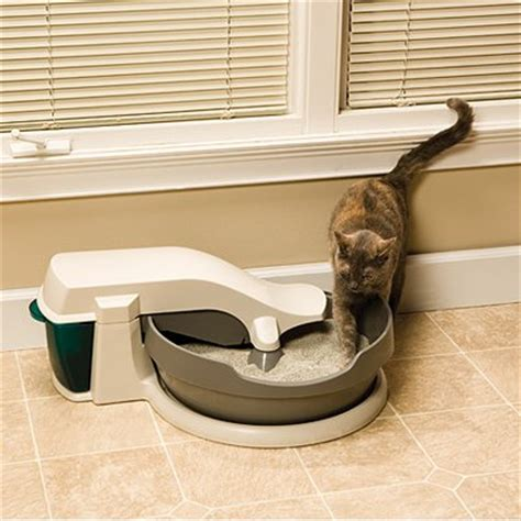 automatic self cleaning litter box stop your s snacking from the litter box petsafe