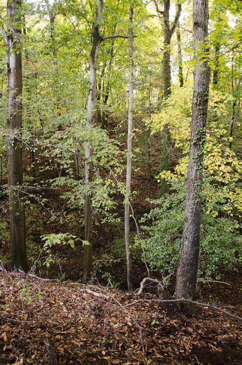 ravine     runs north   asbestos