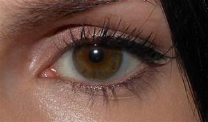 Makeup Tips For Deep Set Hooded Eyes | Fay Blog