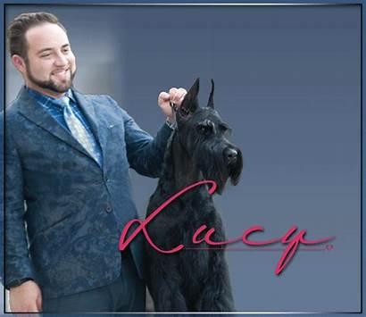 Dog Raton Boca Mcgee Club Judge Brooks