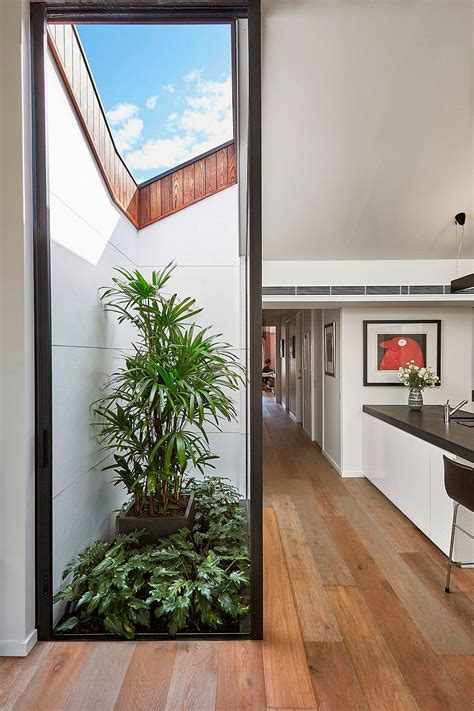 alterations enliven small semi detached melbourne house