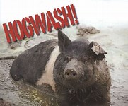 Image result for Hogwash