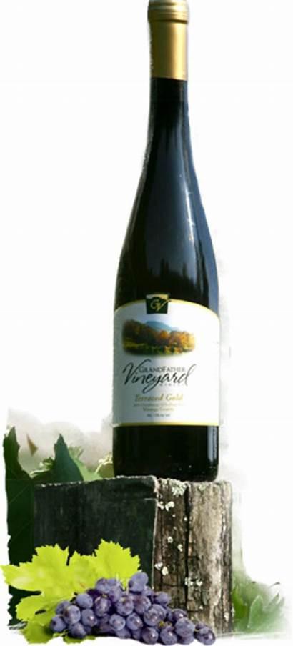 Winery Grandfather Wine Vineyard Soft Bottle Wife