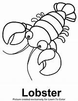 Lobster Coloring Outline Pages Starfish Drawing Footprints Buoy Footprint Printable Sand Line Sea Under Animals Animal Lobsters Getdrawings Sheets Crafts sketch template