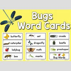 Pictureword Cards Printables Prekinders