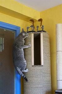 Arbre à Chat Fait Maison : un arbre chat fait maison articles pour chat pinterest chat griffoir et chien chat ~ Melissatoandfro.com Idées de Décoration