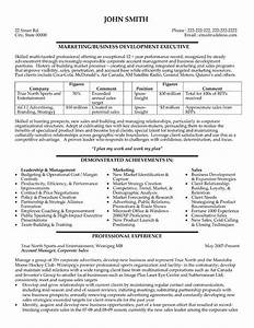 Pin by maria sysyn on career pinterest executive for Sample resume for experienced marketing professional