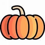 Pumpkin Icon Icons Flaticon