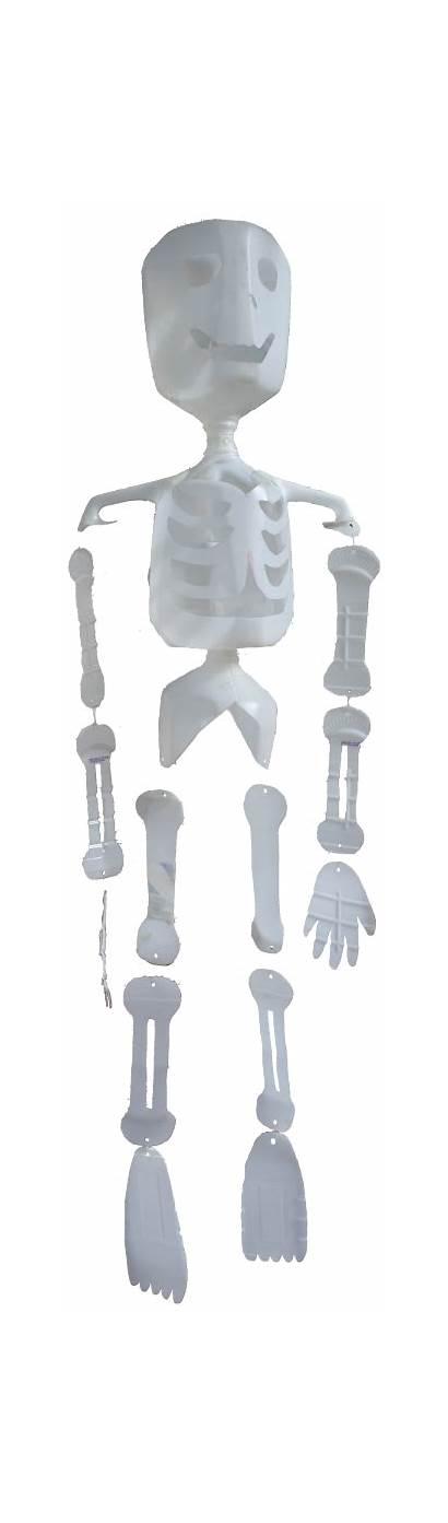Milk Skeleton Jug Plastic Recycled Pattern Skeletons