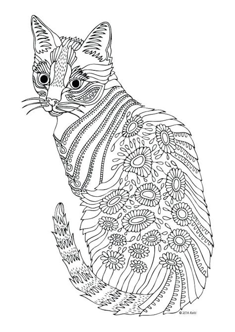cat coloring pages  adults  getcoloringscom  printable colorings pages  print