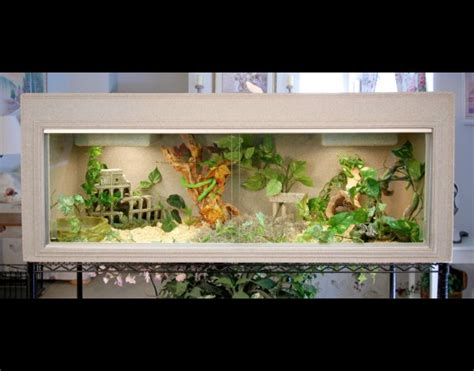 reptile cages bearded dragon cage snake cage cage