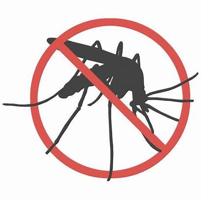 Mosquito Bite Anti Story Inflammatory Rockstar Success