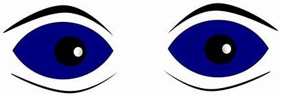 Eyes Clipart Eye Looking Nose Right Clip