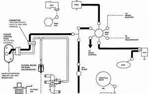 Wiring Diagram  26 1994 Ford Ranger Vacuum Hose Diagram