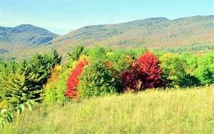 Kostenlose Bilder Herbst : fotos herbst kostenlos ~ Yasmunasinghe.com Haus und Dekorationen