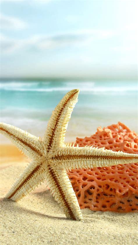 starfish wallpapers high quality