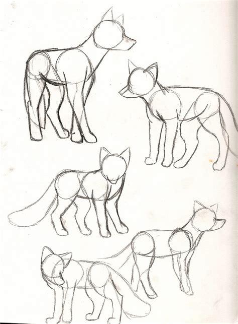fox sketches  annadrujok  deviantart