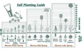 Fertilizing Your Vegetable Garden