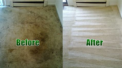 Drytech Carpet Cleaning Home Depot Carpet Cleaning Machine Rental Remove Wine Stains From How Much Can A Business Make Smartstrand Silk Reviews Australia Affordable Furniture And Red Lounge Wv Do You Get Lipstick Out Of New York