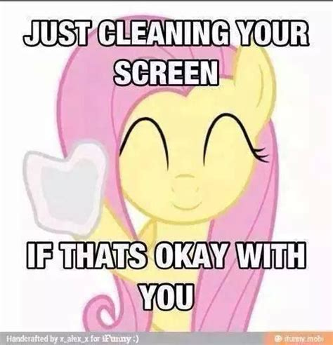 Mlp Fluttershy Meme - 782 best fluttershy images on pinterest fluttershy ponies and pony