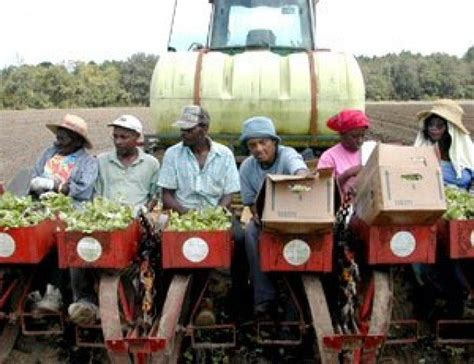 Over A Billion Dollars In Payouts For Black Farmers From
