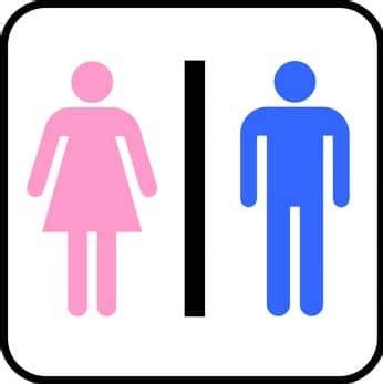 pictogramme toilette homme femme toilettes s 232 ches et toilettes humides marillys mac 233