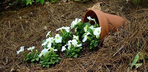 create  spilled flower pot todays homeowner