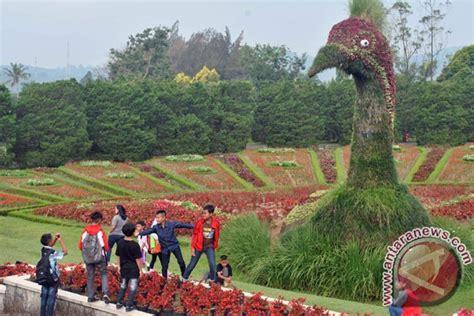 wisata taman bunga nusantara foto antara news