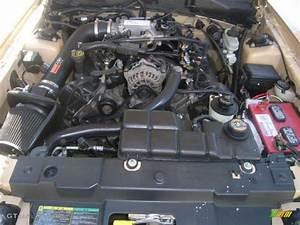 2000 Ford Mustang GT Coupe 4.6 Liter SOHC 16-Valve V8 Engine Photo #48052289 | GTCarLot.com