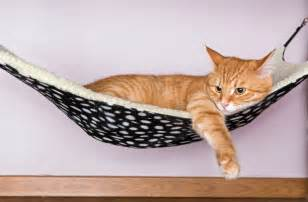cat hammock how to make a cat hammock ebay