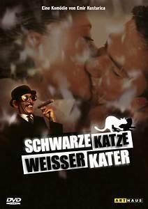 Weißer Wurm Katze : schwarze katze wei er kater film ~ Markanthonyermac.com Haus und Dekorationen