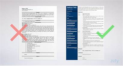 Resume Owner Example Examples Sample Templates Skills