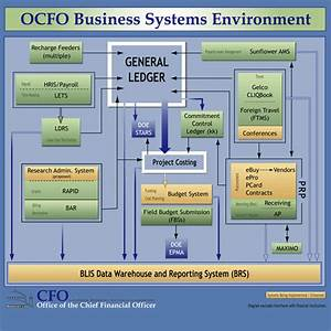 Cfo  Business Systems Analysis