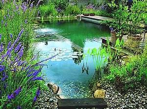Construction Piscine Naturelle : le principe de la piscine naturelle dossier ~ Melissatoandfro.com Idées de Décoration